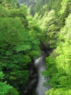 多摩川上流.jpg
