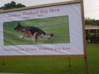 shepard show.jpg